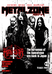 metalzoneWeb